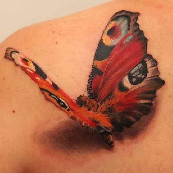 Bedeutung schmetterling Krafttier Schmetterling: