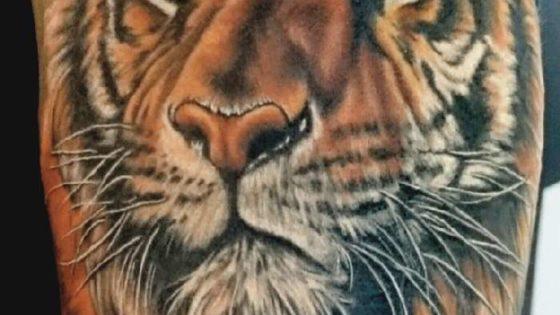 Tattoo, Idee, Raubkatze, Tiger, Realistic